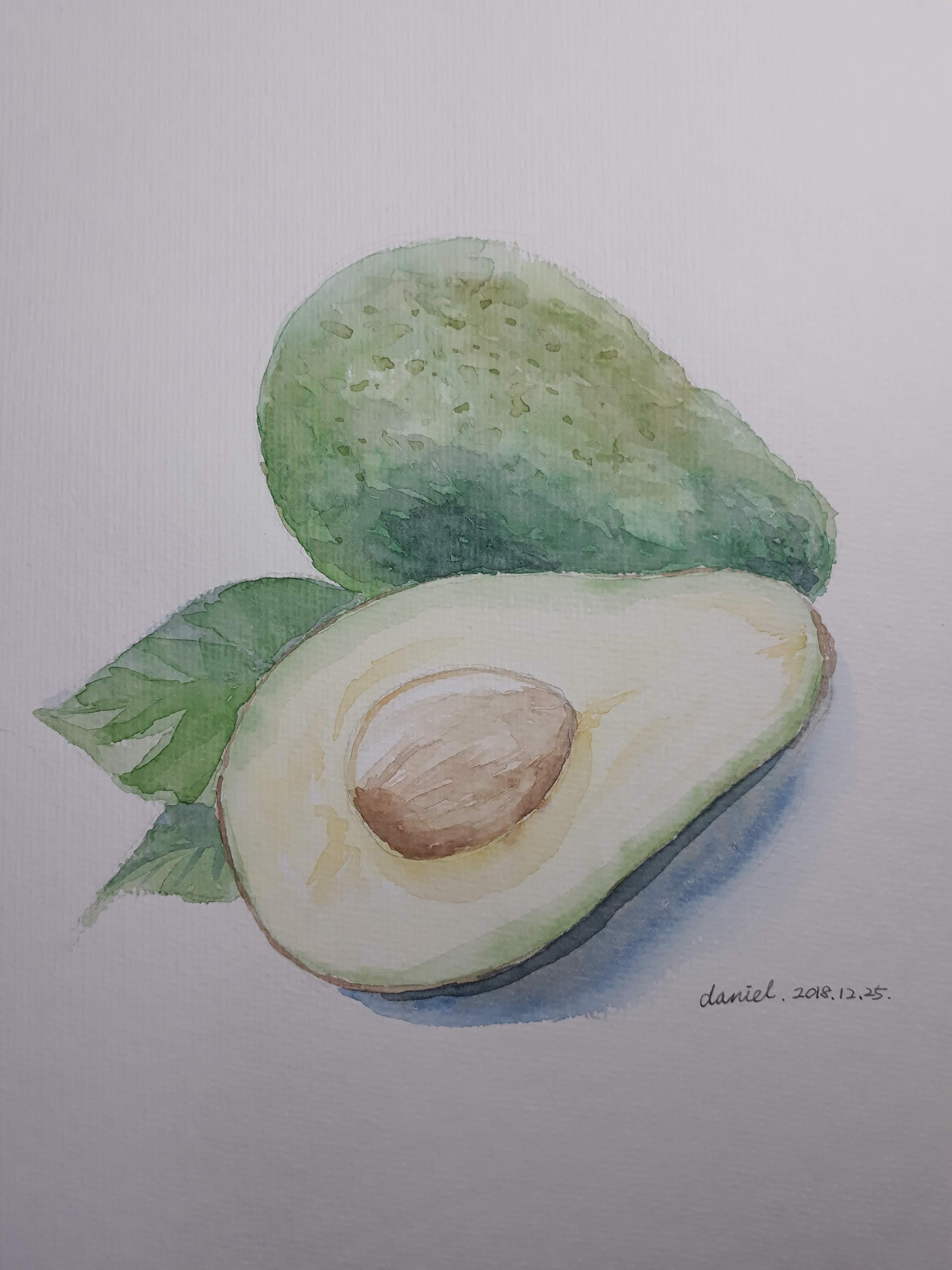 아보카도 수채화(그리는 과정 포함)