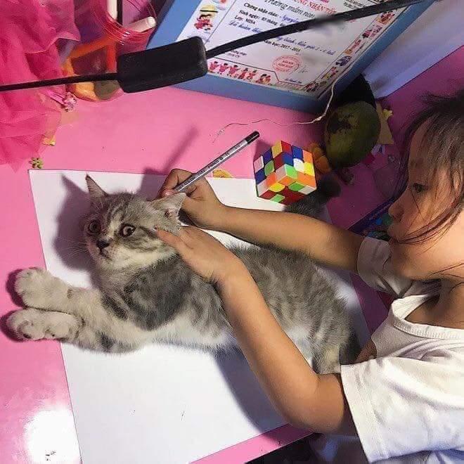 고양이 그리는 방법!!!