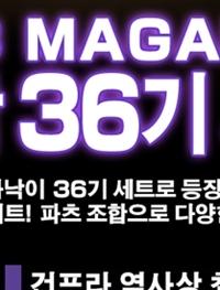HG 마그아낙 36개 셋트(+α) 질렀습니다.
